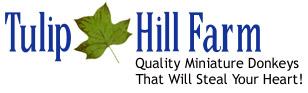 Tulip Hill Farm